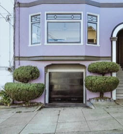 bushes3.jpg